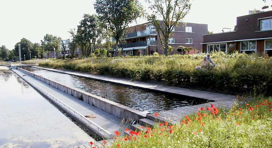 Landscape Design By Architects Of Dutch Hospital